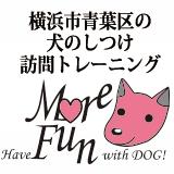 横浜市青葉区の訪問ドッグトレーニングなら