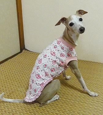 画像: ピンクプリンセス+縁取りレース(綿ニット)Tシャツ2号