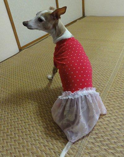 画像1: ピンクハート(綿ニット)+スカート付Tシャツ2号
