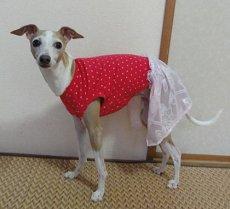 画像5: ピンクハート(綿ニット)+スカート付Tシャツ2号 (5)