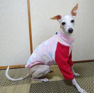 画像1: ピンク星(マイヤーボア)長袖トレーナー3号