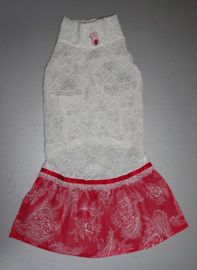 イタグレ服 スカート付